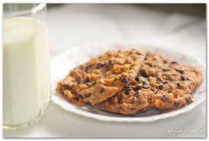 cookies-and-milk-final_14481