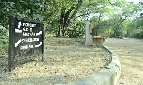 Jahanpanah City Forest; Image Credit: SoDelhi